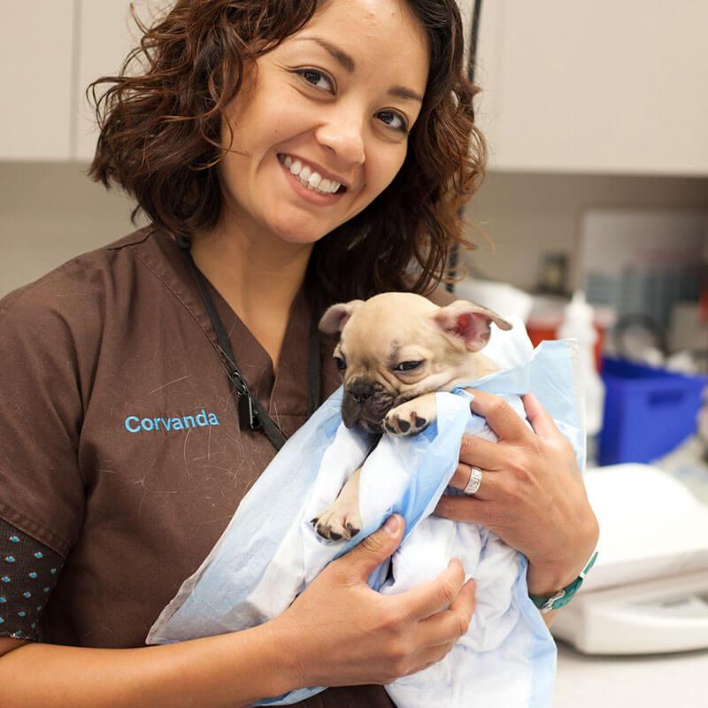 1st Pet Vet Patients-10